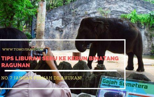 tips liburan seru ke kebun binatang ragunan
