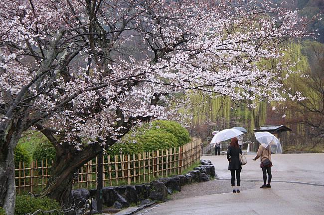 maruyama park sapporo