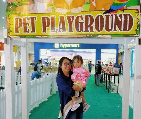 mengenal binatang di pet playground mall lippo cikarang