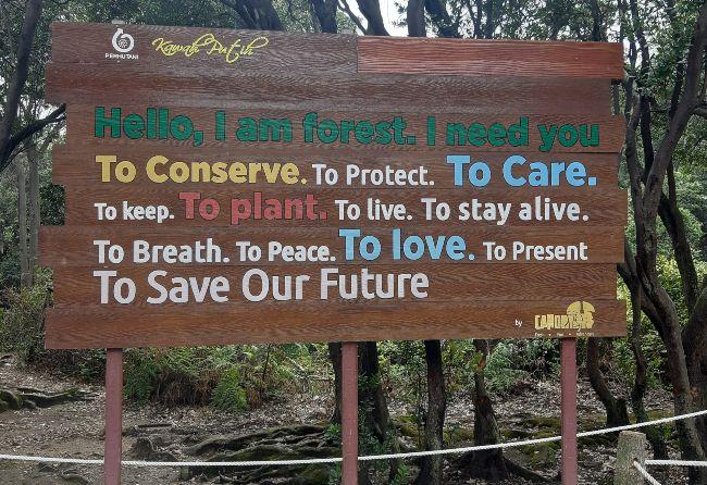 save bumi