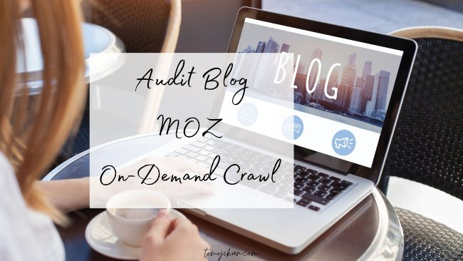 site audit blog dengan moz