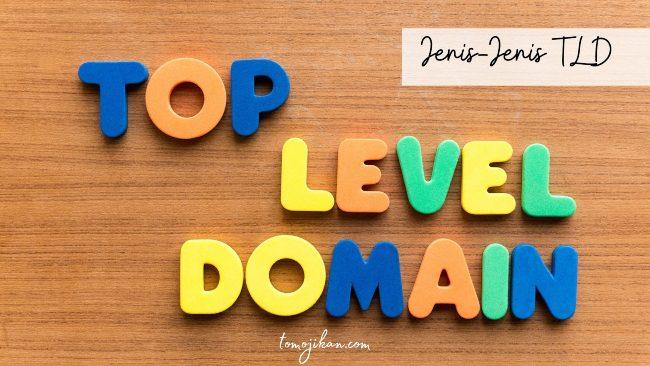 jenis general top level domain